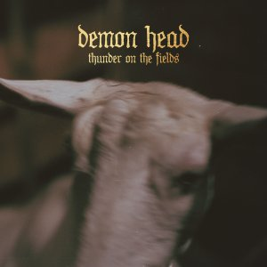 19-DemonHead
